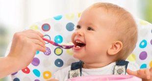 غذای کمکی نوزاد در ماه هشتم